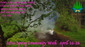 2016-Spring-Community-Week-call